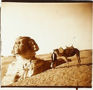EGYPTE-Le-Sphynx-de-Gizeh-Archeologie-ca-1910-Photo-Stereo-Plaque-Verre-PL59OY2