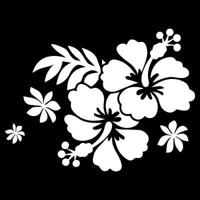 Hibiskus XXL  Auto Aufkleber Wandtattoo Blumen Wunschfarbe