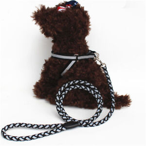 Collar-Rope-Dog-Leash-Easy-Belt-Harness-Pet-New-Lead-Nylon-Adjustable