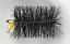 thumbnail 2 - CFC024 150mm/6 inch dia Black Polypropylene Flue Brush 200mm long