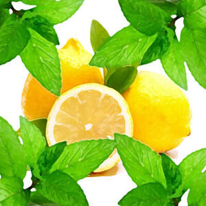 Travelers Lemon Mint Herbal Tea (Blend), loose/bulk from $2.75 (1 oz.)