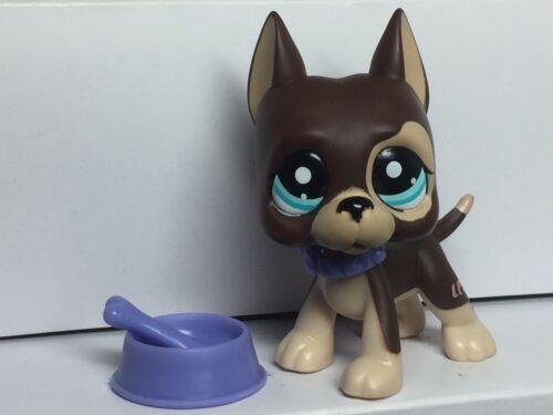 Littlest Pet Shop GREAT DANE Dog #817-2  /& 3 ACCESSORIES-Collar-Dog Bowl-bone