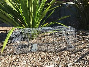 LARGE-TRAP-Humane-live-possum-rabbit-fox-pigeon-bird-animal-cage