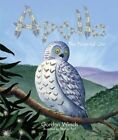 Apollo, the Powerful Owl by Gordon Winch (Paperback, 2014)