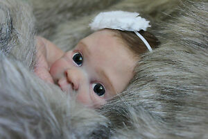 NEW-RELEASE-LE-039-Sienna-Leigh-039-by-Alicia-Toner-Reborn-baby-girl-BABY-ART