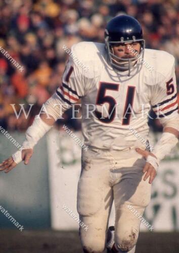 EQ308 Dick Butkus Action Chicago Bears Football 8x10 11x14 16x20 Photo
