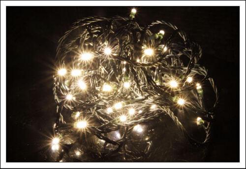 LED guirlande électrique avec 100 warmweißen voyants pour les Affaires étrangères Extérieur Guirlande Lumineuse Blanc chaud