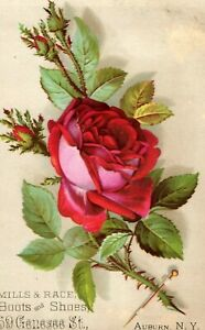 Victorian-Trade-Card-Mills-amp-Race-Boots-amp-Shoes-Red-Rose-Image-D1