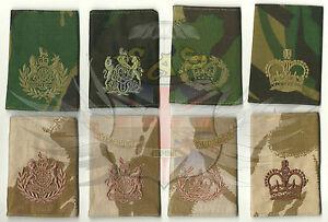 BRITISH-ARMY-SURPLUS-DPM-amp-DESERT-DPM-RANK-SLIDE-CSM-RQMS-WARRANT-OFFICER-SSM