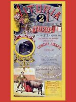 3490.corrida De Toros.spanish Poster.matador Bullfighter Interior Art Design