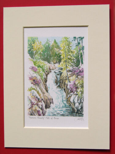 FALLS OF BRUAR SCOTLAND CHARMING MOUNTED WATER COLOUR PRINT 8X6 OVERALL P GRAY
