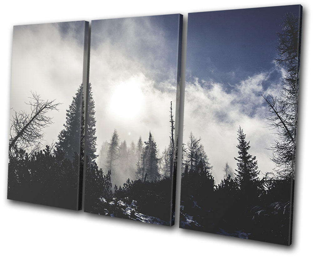 Forest Nature Winter Landscapes TREBLE TELA parete arte foto stampa stampa stampa 66965c