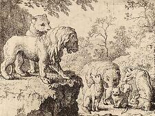 ALLART VAN EVERDINGEN DUTCH LION PARDONS REYNARD OTHER ANIMALS ART PRINT BB4801A