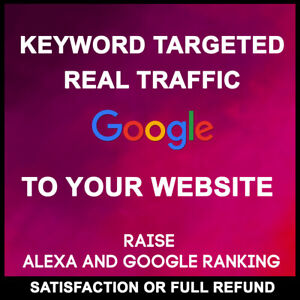 Real-Website-Traffic-from-main-USA-to-Your-Website
