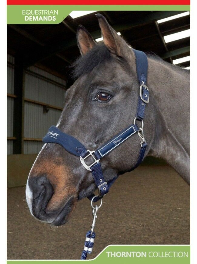 NEW-John Whitaker Thornton Luxury Headcollar And Leadrope Set-Pony Cob Or Full