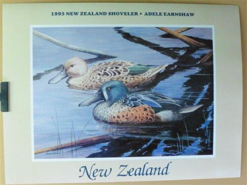 1995 Migratory Waterfowl New Zealand Duck Stamp Poster Print by Adele Earnshaw