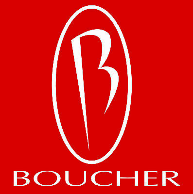 boucher_ford_parts