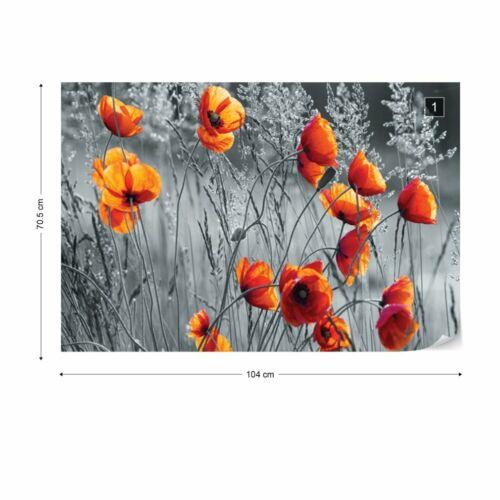 Tapete Vlies Fototapete Orange Mohnblumen Schwarz und Weiß