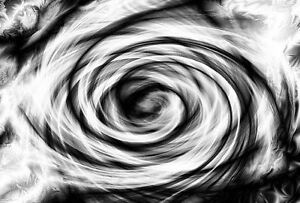 Details About Framed Print Black White Swirly Abstract Rose Picture Poster Flower Art