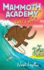 Surf's Up by Neal Layton (Paperback, 2009)