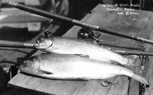 RPPC-Steel-Head-Klamath-River-Fishing-Rods-ca-1940s-Vintage-Patterson-Postcard
