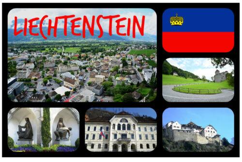 LIECHTENSTEIN FLAGS SOUVENIR NOVELTY FRIDGE MAGNET GIFTS SIGHTS NEW