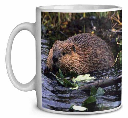 River Beaver Coffee//Tea Mug Christmas Stocking Filler Gift Idea ABV-1MG