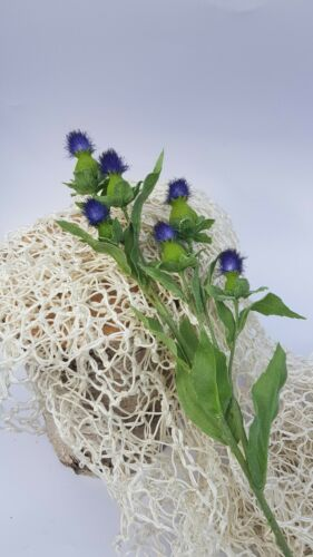 Artificial Scottish thistle flower purple navy wild with 6 heads on each stem