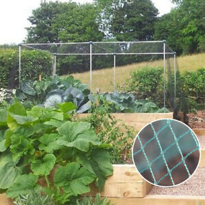 Vegetable Fruit Cages With Green Bird Netting Different Sizes Available