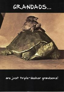 Grandads are tortoise funny happy birthday grandad greeting image is loading grandads are tortoise funny happy birthday grandad greeting bookmarktalkfo Images