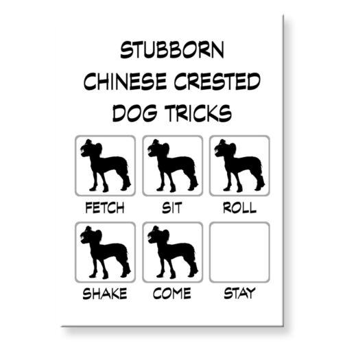 CHINESE CRESTED DOG Stubborn Tricks FRIDGE MAGNET Steel Case Funny