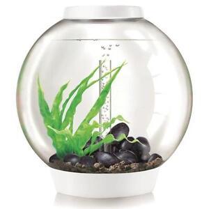 Biorb Nano-aquarium Set complet Classic 60 Led Thermo Blanc