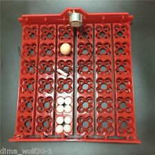 Automatic 14436 Quail Egg Turner Tray With Motor 12 110 220 Volt