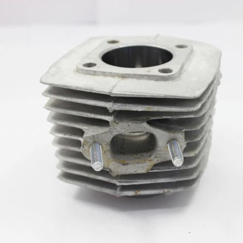 Two Stroke Engine Motorized Bicycle Bike HP Carby Coil Exhaust Sprocket Magneto