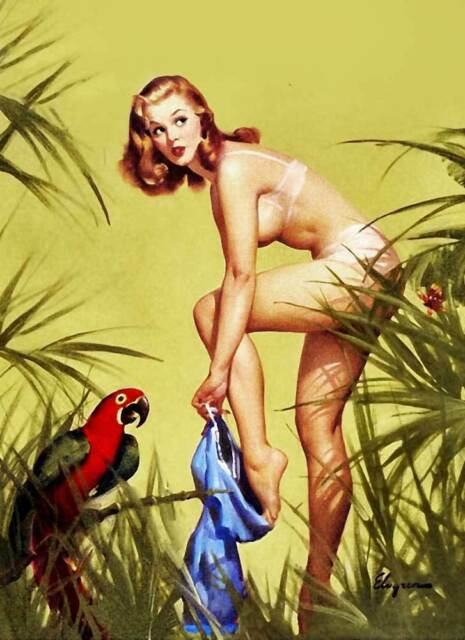 "Vintage GIL ELVGREN Pinup Girl CANVAS ART PRINT Poster Macaw & Girl 16""X 12"""
