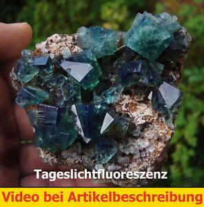 5998-Fluorite-Fluorite-Twin-daylightflourescence-UV-Rogerley-GB-Movie