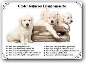 Warnschild 20x30cm Lustige Eigentumsrechte Golden Retriever 02 Ebay