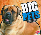 Big Pets by Catherine Ipcizade (Hardback, 2010)