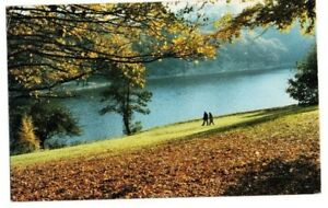 Yorkshire-Leeds-Roundhay-Park-Waterloo-Lake-Postcard-Franked-1985