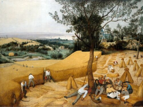 6530.People working on harvest.resting on field.POSTER.art wall decor
