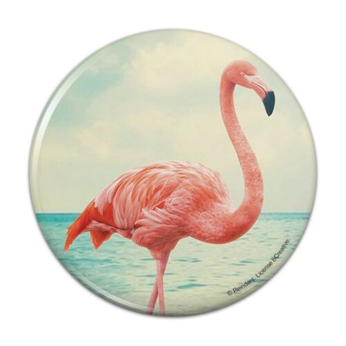 Flamingo on Beach Starfish Retro Pinback Button Pin Badge