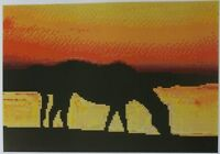 Cross Stitch Chart sunset With Horse 17-101 (large Print)