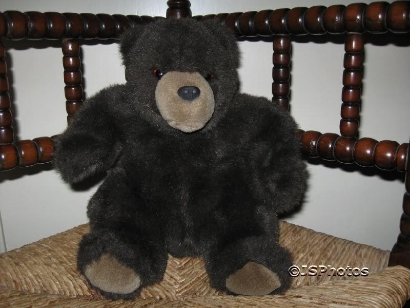 Vintage Dark marrone Teddy Bear Dutch Netherlands RARE