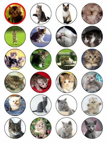 24 Round CATS Cupcake Topper Edible Top Wafer// Rice Paper