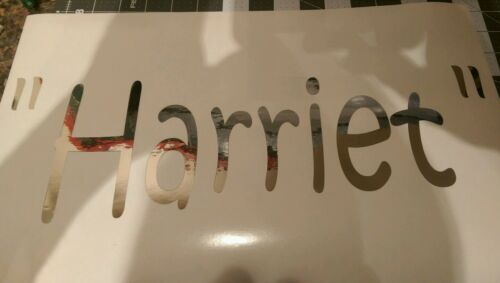 Custom Camper Name decals in Chrome or any color Glamping camping Shasta