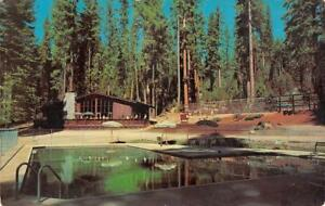 CAMP-BLUE-Pinecrest-California-Swimming-Pool-Sonora-Pass-Hwy-c1960s-Postcard
