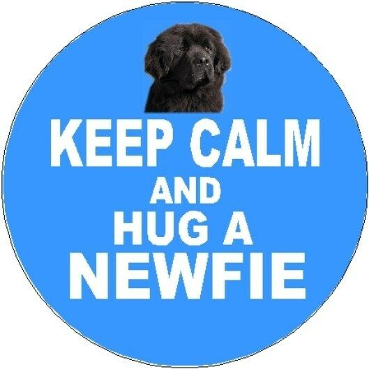 2 Newfoundland Dog Car Stickers (Keep Calm & Hug) By Starprint