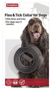 Beaphar-Uk-Ltd-Beaphar-Dog-Plastic-Flea-amp-Tick-Collar-65Cm