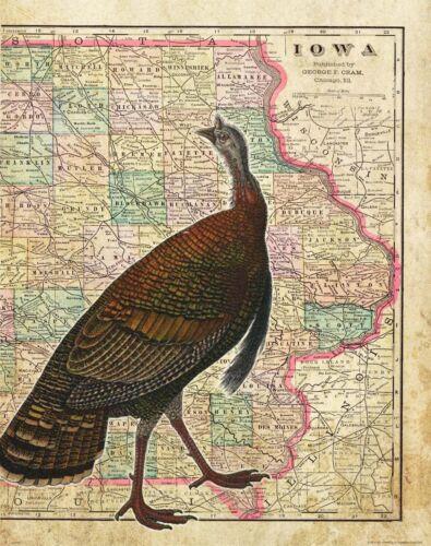 Iowa State Map Turkey Hunting Box Call Poster Art Print Vintage Federation MAP23