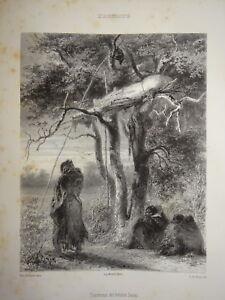 D'ap. Karl Bodmer Litho Tombeaux Indiens Sioux Amerique Native Indians 1850